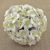 http://www.scrapkowo.pl/shop,kwiaty-jabloni-biale-10szt,4803.html