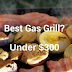 11 Best Gas Grills Under $300 With Installation Guide