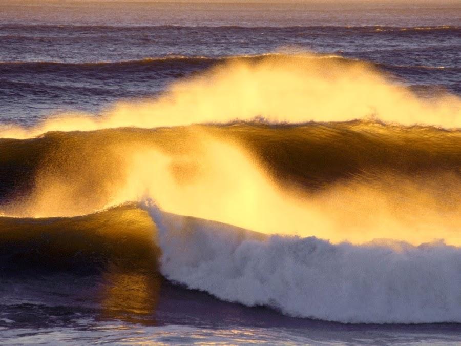 bucear en oceanos contaminados