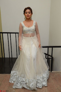Anu Emmanuel in a Transparent White Choli Cream Ghagra Stunning Pics 042.JPG