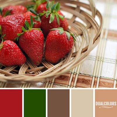 Color Paleta 153