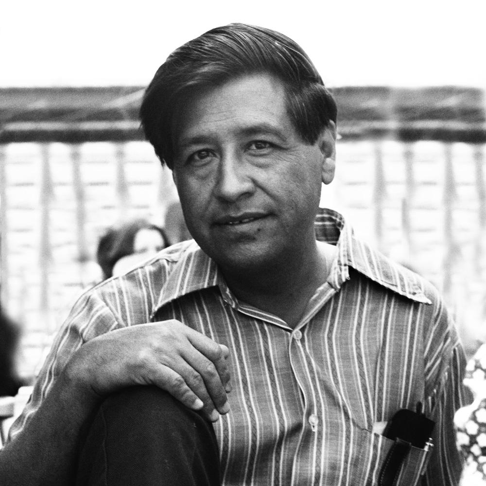 cesar chavez essay how do i write a conclusion for an english essay cesar chavez essay