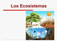 https://docs.google.com/presentation/d/1VvJiFgGf3_mk2iQ-ZMzVzknDSUOuy1ylhNWggxf06vk/present#slide=id.i0