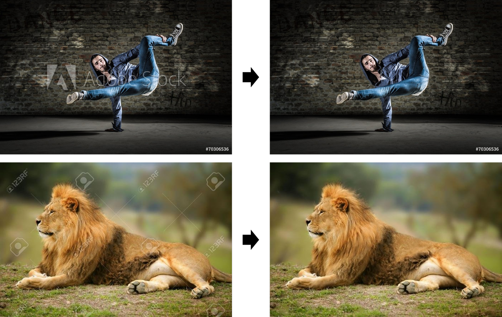 Adobe Stock Images Remove Watermark Google Ai Blog Making Visible Watermarks More Effective