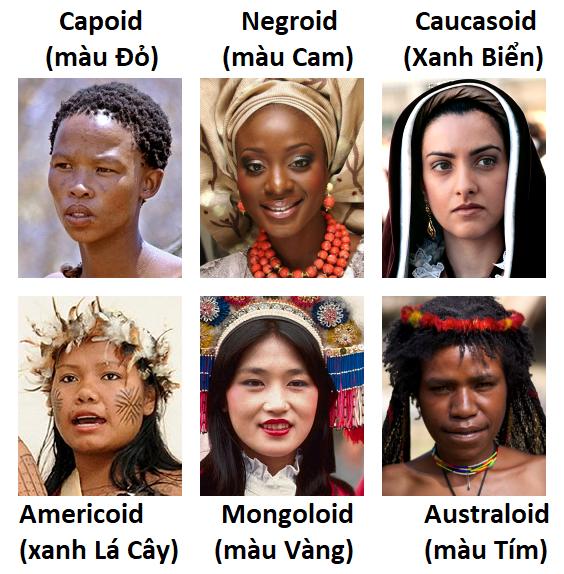 Las razas y etnias en el mundo Humans