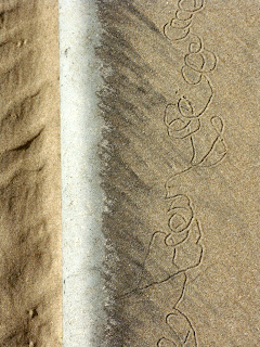 sand worm traces