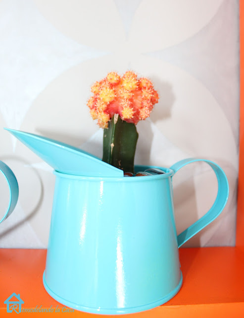 blue - teal container on shelf