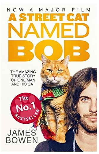 A Street Cat Named Bob (2016) ταινιες online seires oipeirates greek subs