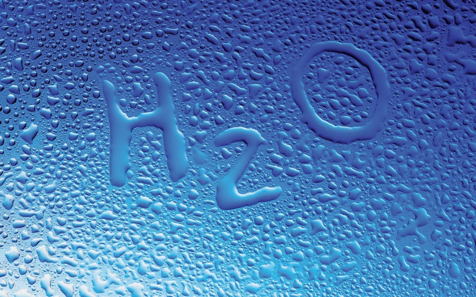 Fungsi Manfaat Air Bagi Tubuh Makhluk Hidup