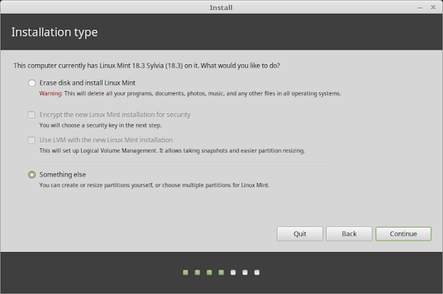 Install Linux Mint- Something Else