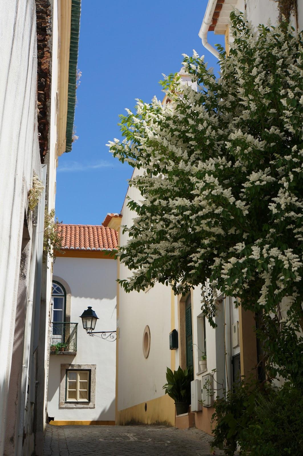 Constançia - Portugal