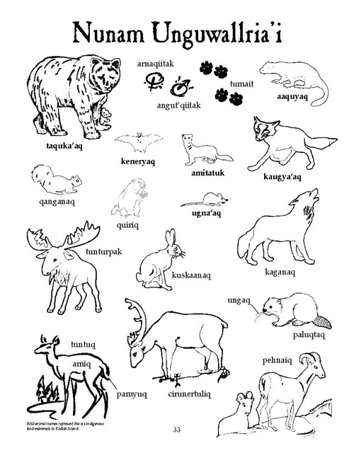 Animals Research: Animal Names