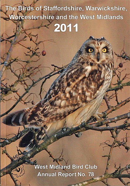 Jupiter Birding: Annual Bird Reports