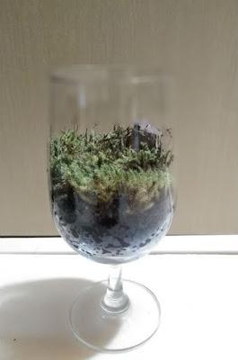 100均ワイングラスでコケリウム完成