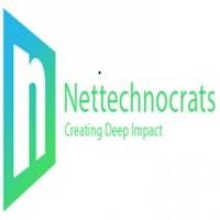 Nettechnocrats Walkin Drive