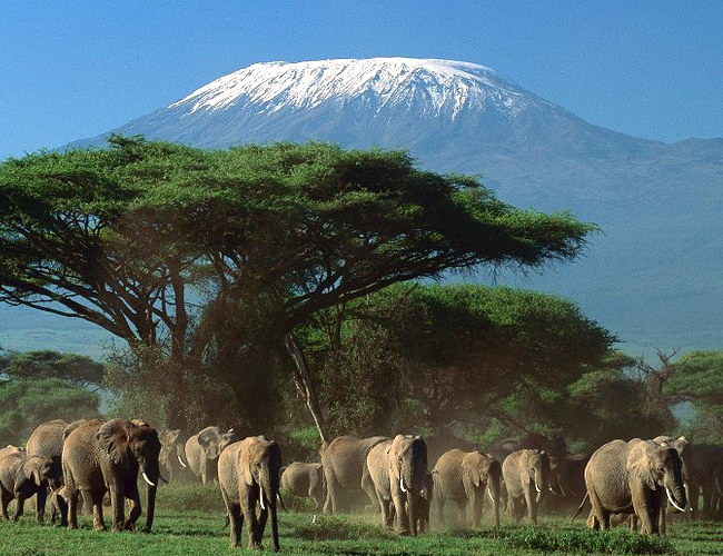 Xvlor Mount Kilimanjaro is stratovolcano with peaks of Uhuru, Mawenzi and Shira