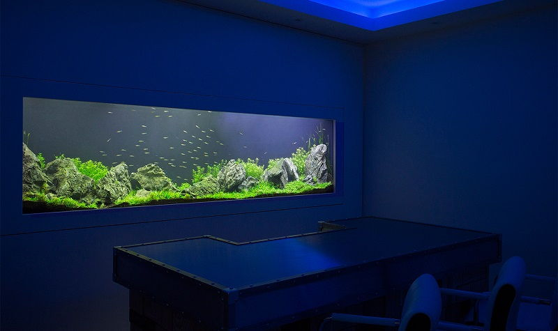 Aquarium Mewah