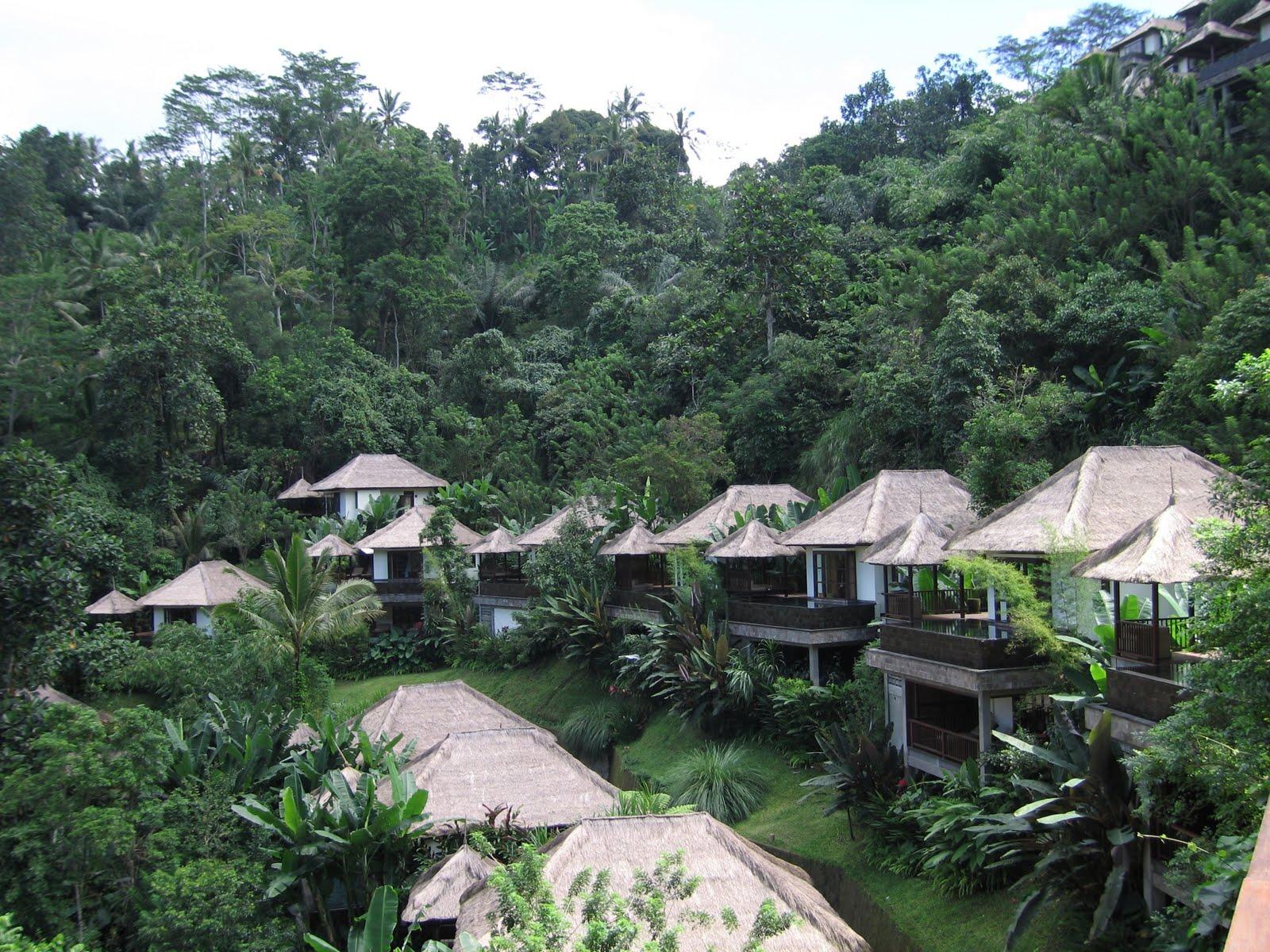 ubud hanging gardens - Ubud Hanging Gardens Bali Indonesia
