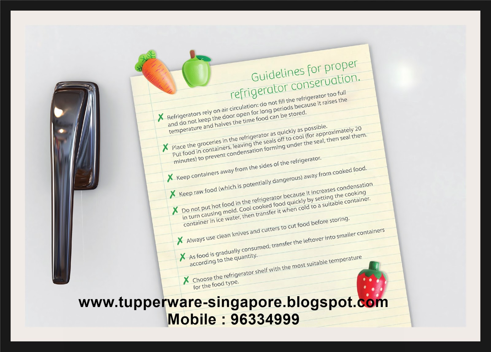 Buy Tupperware in Singapore: Food Conservation 2 by Tupperware
