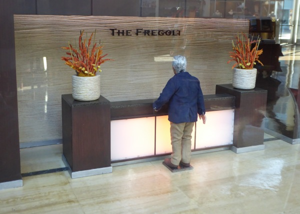 Fregoli stop-motion reception set Anomalisa