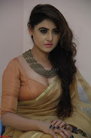 Sony Charistha in Lovely Brown Saree and Choli Spicy Pics ~  Exclusive 02.JPG