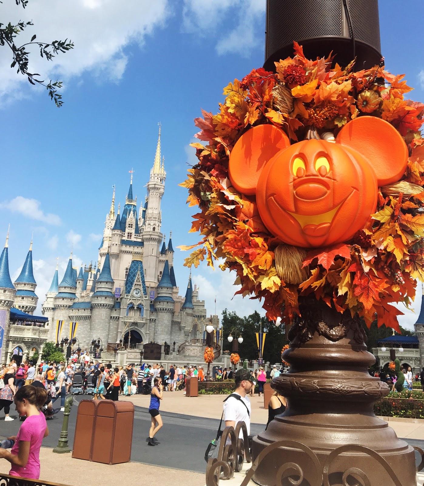 Walt Disney World, WDW, Disney Castle