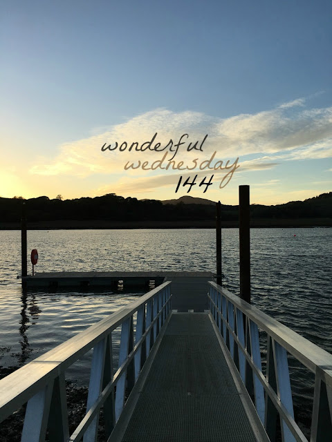 Wonderful Wednesday #144