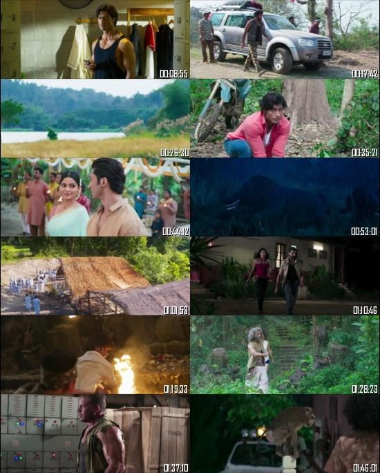 Junglee 2019 Hindi 1080p 720p 480p WEB-DL x264 Full Movie