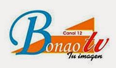 Bonao TV Canal 12 en vivo