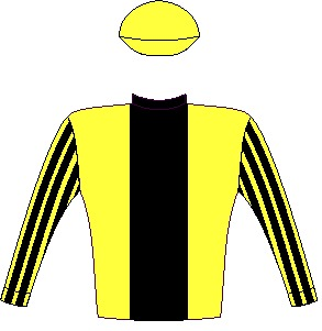 Solid Speed - Silks - Yellow, black stripe, striped sleeves, yellow cap