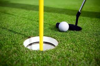 tukang rumput sintetis mini golf