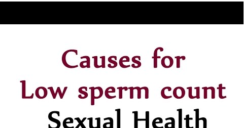 Low sperm count factors