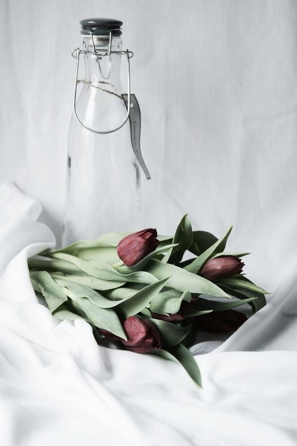Blog + Fotografie by it's me! - Wohnen - rote Tulpen, 6