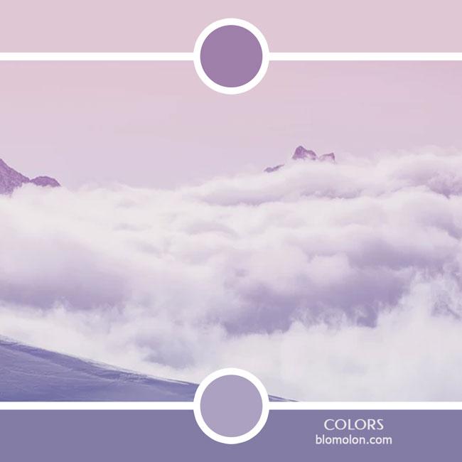 variedad_en_color_color_49