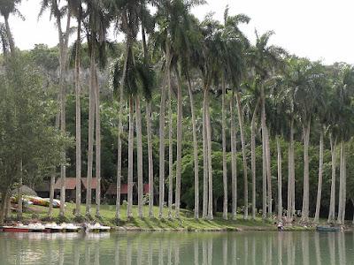 Kuba, La Arboleda, Bootsverleih am Ufer des Rio Canimar