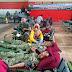Subhanallah! Ratusan Prajurit Kostrad Sumbangkan Darah Untuk Korban Banjir Bandang