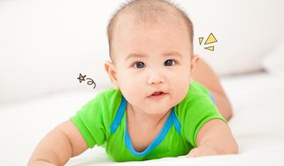 Proses Pertumbuhan Bayi