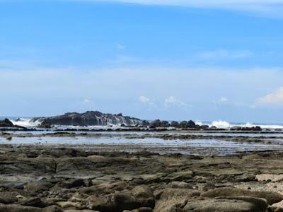 pantai Karang berureum