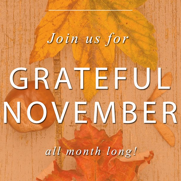 A Cruelty Free #GratefulNovember Blogger Challenge vertical graphic