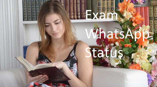 exam whatsapp status