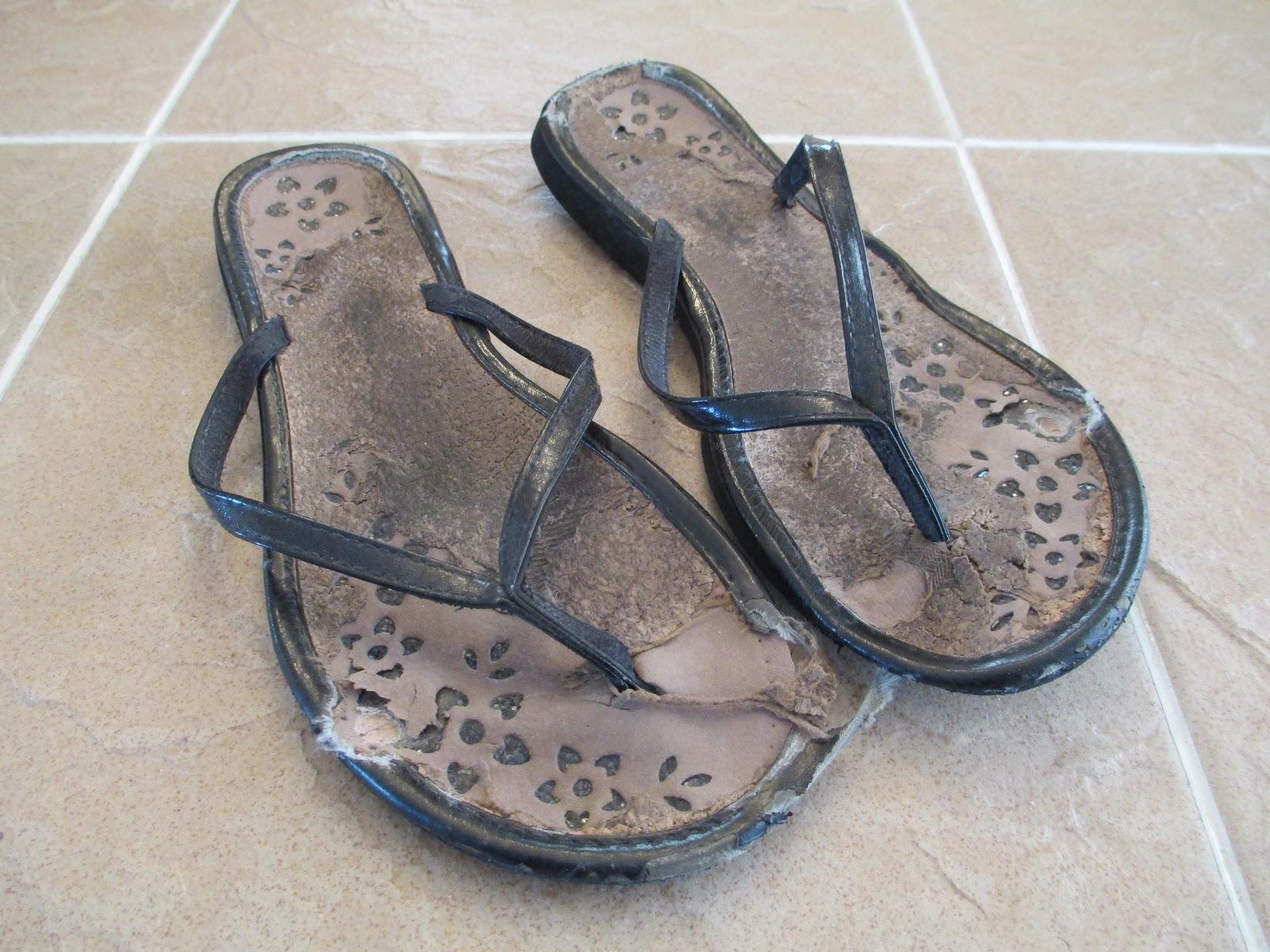Flip Flop Brand Name Shoes