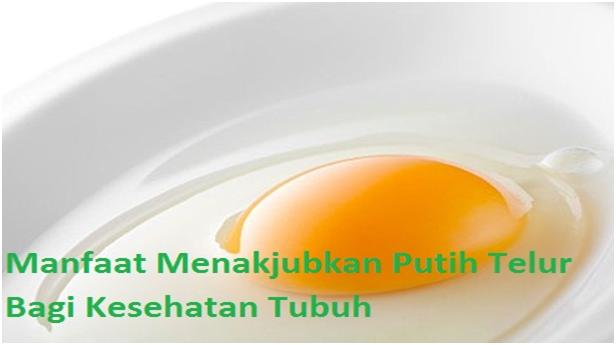 Manfaat Menakjubkan Putih Telur Bagi Kesehatan Tubuh