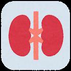 内臓のアイコン(枠付き・腎臓)