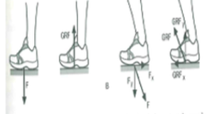 Biomechanical Principles of a Volleyball Spike