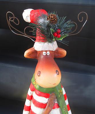 Weihnachten - Weihnachtsfotos - Weihnachtselch
