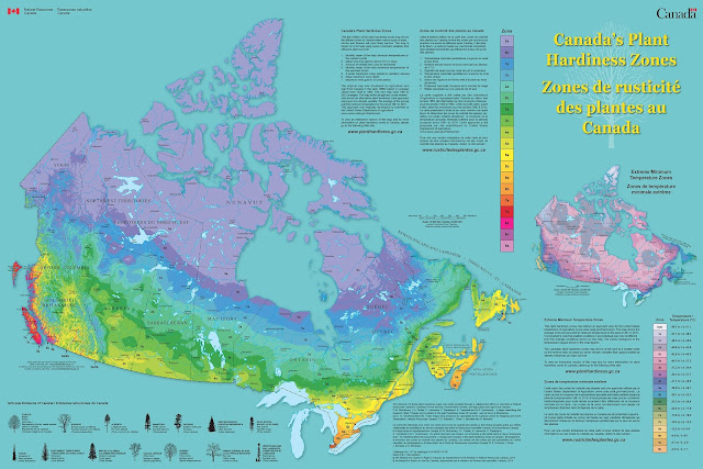 Canadian Zone Hardiness Map - planting guide