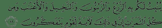Surat An Nahl Ayat 11