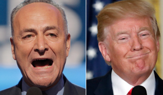 Trump fires back at Schumer for dissuading 'seat of the pants negotiating'