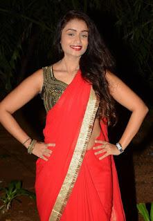 Kiran Chetavani Hot Stills in Saree 13.jpg