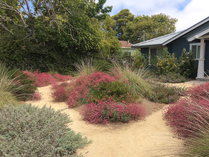Exceptionnel Design And Maintenance Of Native Plant Gardens   1: Jim Martin, Garden  Designer